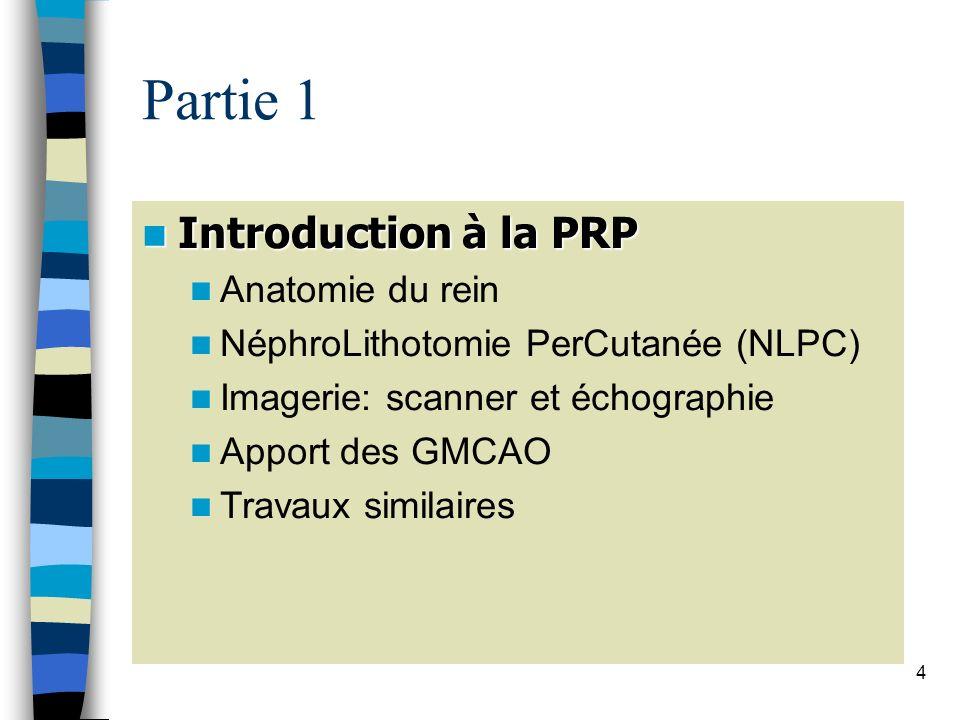 4 Partie 1 Introduction à la PRP Introduction à la PRP Anatomie du rein NéphroLithotomie PerCutanée (NLPC) Imagerie: scanner et échographie Apport des