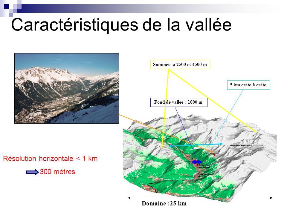 Domaine :25 km Fond de vallée : 1000 m Résolution horizontale < 1 km 300 mètres Caractéristiques de la vallée Sommets à 2500 et 4500 m 5 km crête à cr