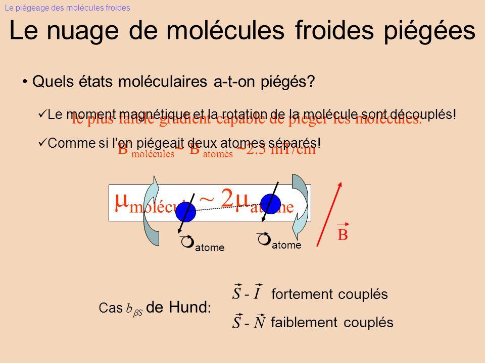 Le nuage de molécules froides piégées Quels états moléculaires a-t-on piégés? molécule ~ 2 atome B molécules ~ B atomes ~ 2.5 mT/cm le plus faible gra