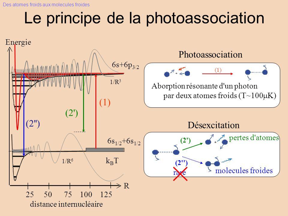 Le principe de la photoassociation Photoassociation Aborption résonante d un photon par deux atomes froids (T~100 K) (1) Des atomes froids aux molecules froides R (1) 6s+6p 3/2 1/R 3 1/R 6 kBTkBT 25 50 75 100 125 Energie 6s 1/2 +6s 1/2 distance internucléaire (2 ) (2 )