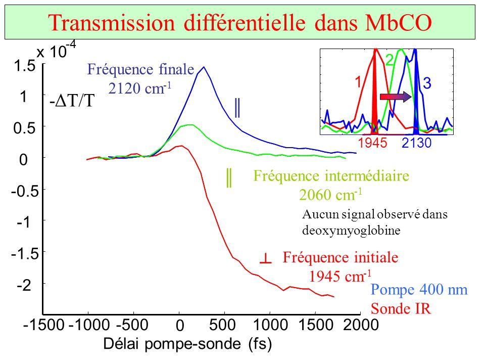 x 10 -4 Délai pompe-sonde (fs) -1500-1000-500 0 500100015002000 -2 -1.5 -0.5 0 0.5 1 1.5 Fréquence initiale 1945 cm -1 Fréquence finale 2120 cm -1 Fré