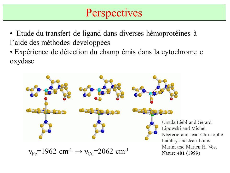 Etude du transfert de ligand dans diverses hémoprotéines à laide des méthodes développées Expérience de détection du champ émis dans la cytochrome c o