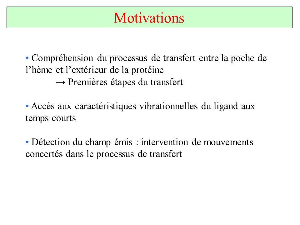 Motivations Compréhension du processus de transfert entre la poche de lhème et lextérieur de la protéine Premières étapes du transfert Accès aux carac