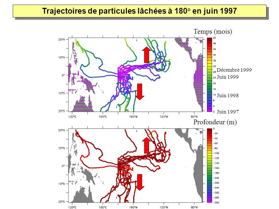 Temps (mois) Profondeur (m) Juin 1997 Décembre 1999 Trajectoires de particules lâchées à 180° en juin 1997 Juin 1998 Juin 1999