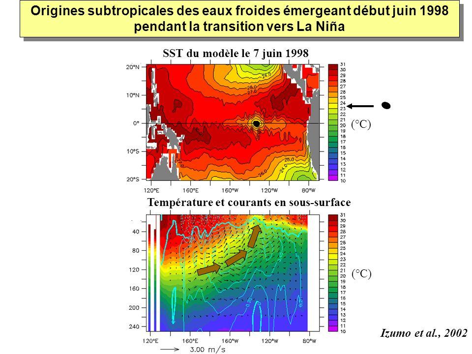 SST du modèle le 7 juin 1998 Température et courants en sous-surface (°C) Origines subtropicales des eaux froides émergeant début juin 1998 pendant la