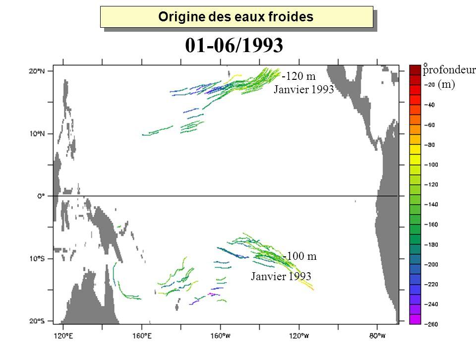 Janvier 1993 -120 m -100 m profondeur (m) 01-06/1993 Origine des eaux froides