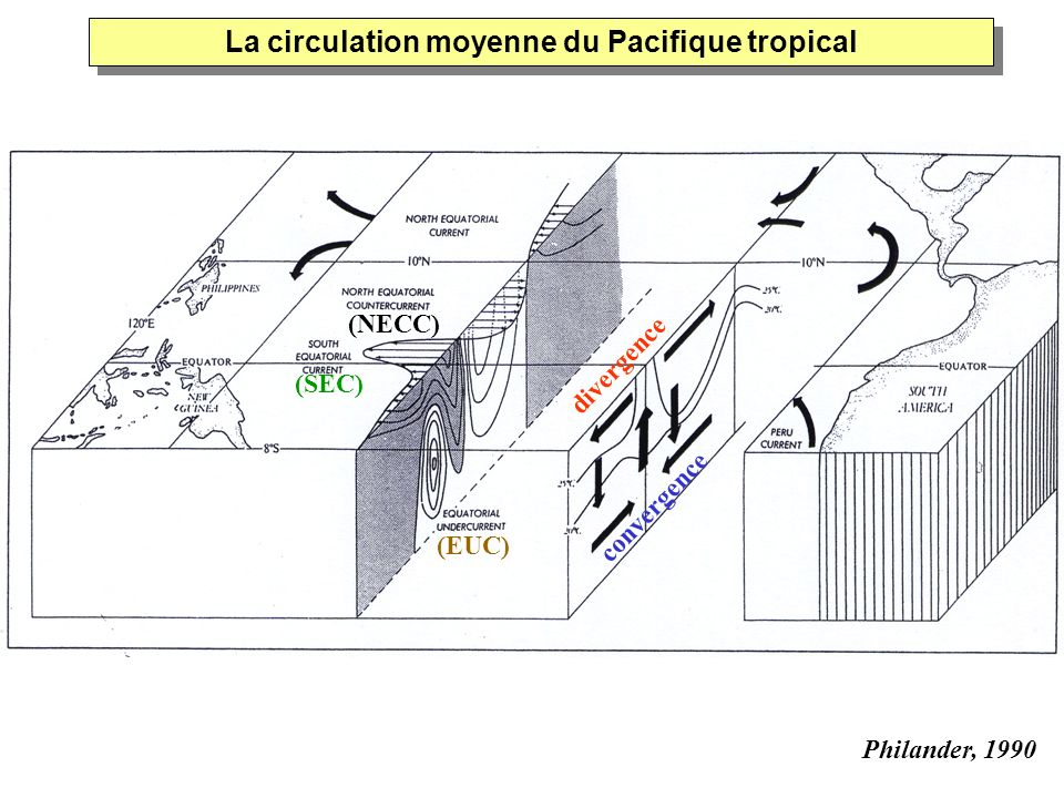 Distribution méridienne de lupwelling