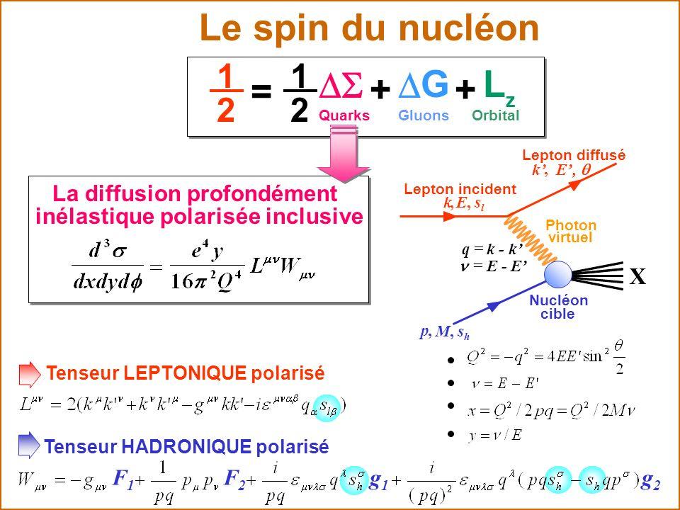 Tenseur LEPTONIQUE polarisé g1g1 Tenseur HADRONIQUE polarisé F1F1 F2F2 g2g2 La diffusion profondément inélastique polarisée inclusive X p, M, s h q =
