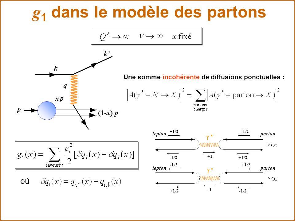 g 1 dans le modèle des partons x fixé q p k k x p (1-x) p Une somme incohérente de diffusions ponctuelles : leptonparton Oz -1/2 +1/2 -1/2 +1 leptonpa