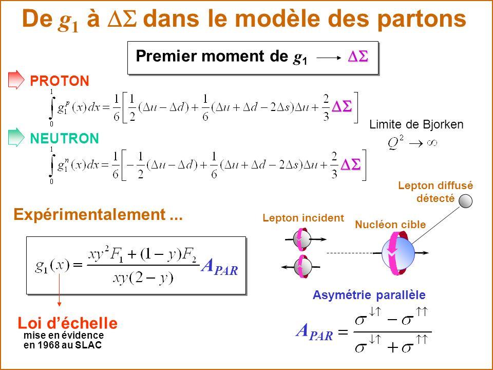 Loi déchelle mise en évidence PROTON NEUTRON Limite de Bjorken De g 1 à dans le modèle des partons Premier moment de g 1 Expérimentalement... A PAR Le