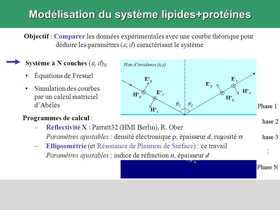 Modélisation du système lipides+protéines Objectif : Comparer les données expérimentales avec une courbe théorique pour déduire les paramètres (, d) c