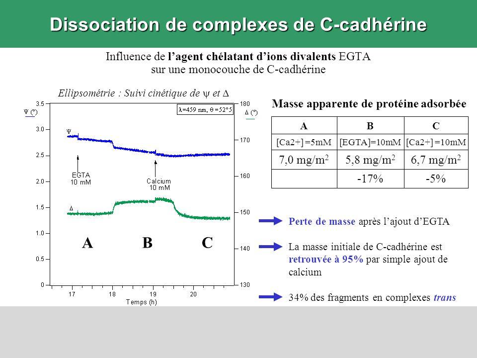 Influence de lagent chélatant dions divalents EGTA sur une monocouche de C-cadhérine Dissociation de complexes de C-cadhérine ABC Ellipsométrie : Suiv