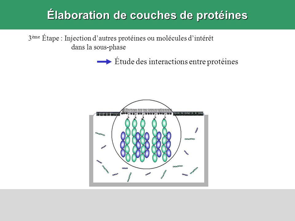 Techniques détude expérimentale Informations recherchées Mesurer la quantité de protéines ancrées aux lipides –Sans marqueur –Sans transfert de la couche de protéines Suivi de lévolution en temps réel et in situ –Ellipsométrie à la surface de leau Résolution 0,5 mg/m 2 = 0,5 ng/mm 2 –Résonance des plasmons de surface sur surface solide Déterminer la structure verticale de la couche –Réflectivité des rayons X Résolution verticale 1 nm