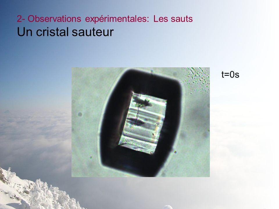2- Observations expérimentales: Les sauts Un cristal sauteur t=0s