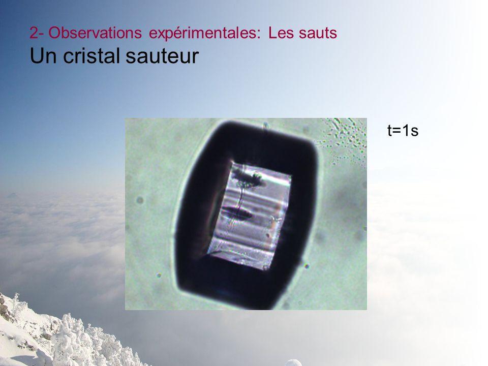 2- Observations expérimentales: Les sauts Un cristal sauteur t=1s