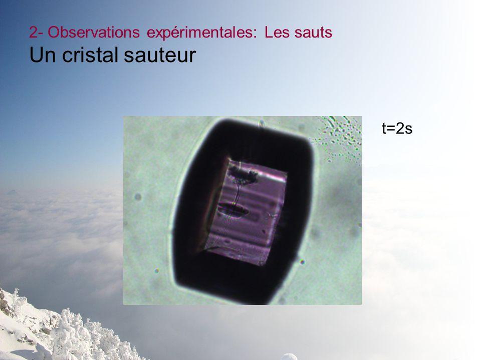 2- Observations expérimentales: Les sauts Un cristal sauteur t=2s
