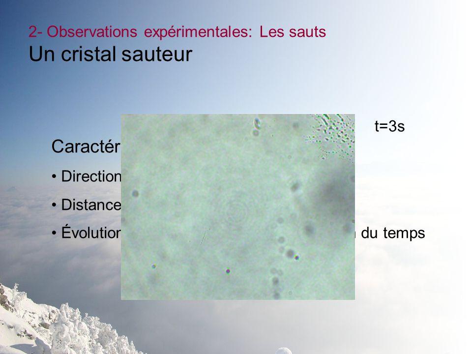 2- Observations expérimentales: Les sauts Un cristal sauteur Caractéristiques observées: Direction, Distance parcourue, Évolution de la densité optiqu
