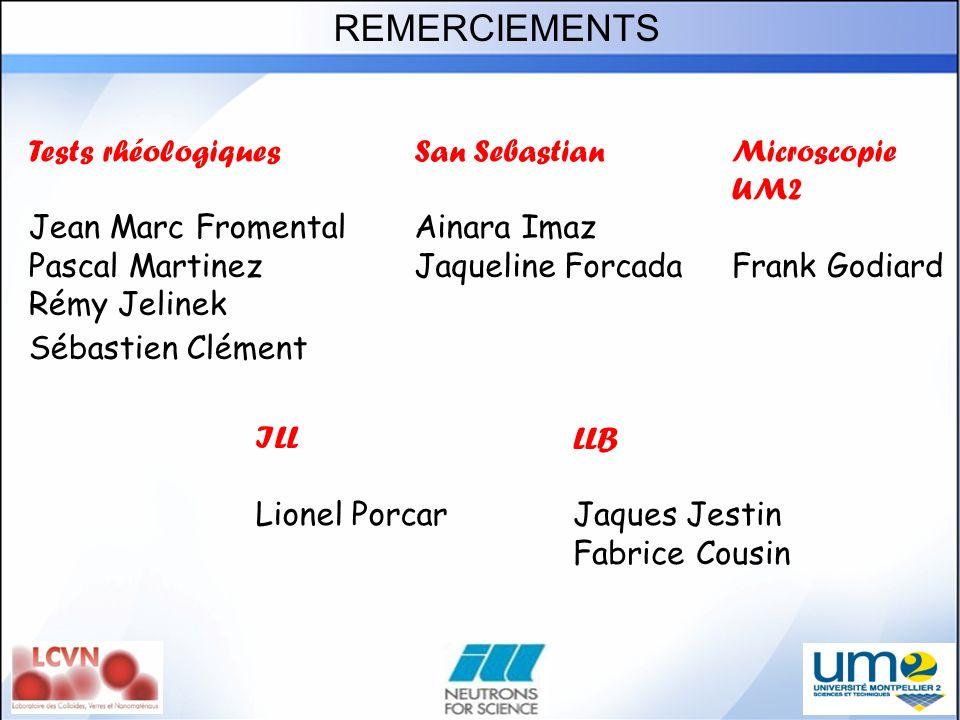 REMERCIEMENTS Tests rhéologiques Jean Marc Fromental Pascal Martinez Rémy Jelinek Sébastien Clément ILL Lionel Porcar LLB Jaques Jestin Fabrice Cousin