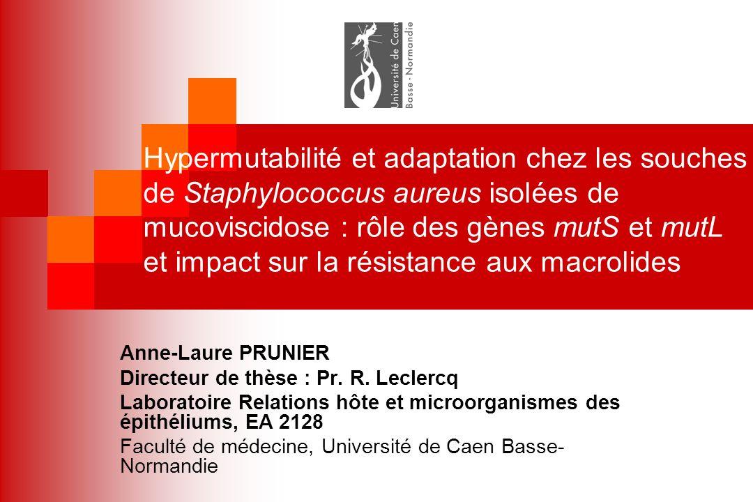 Hypermutabilité et adaptation chez les souches de Staphylococcus aureus isolées de mucoviscidose : rôle des gènes mutS et mutL et impact sur la résist