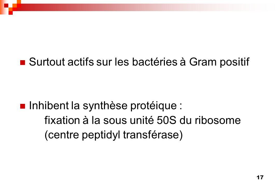 17 Surtout actifs sur les bactéries à Gram positif Inhibent la synthèse protéique : fixation à la sous unité 50S du ribosome (centre peptidyl transfér