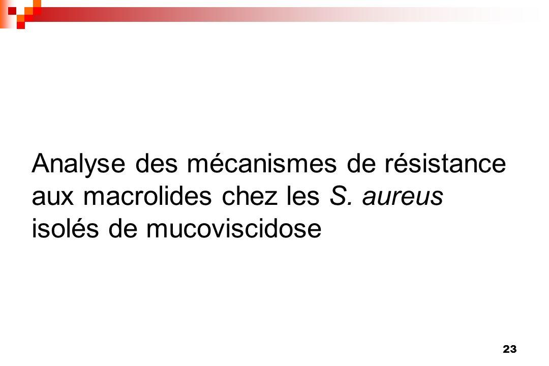 23 Analyse des mécanismes de résistance aux macrolides chez les S. aureus isolés de mucoviscidose