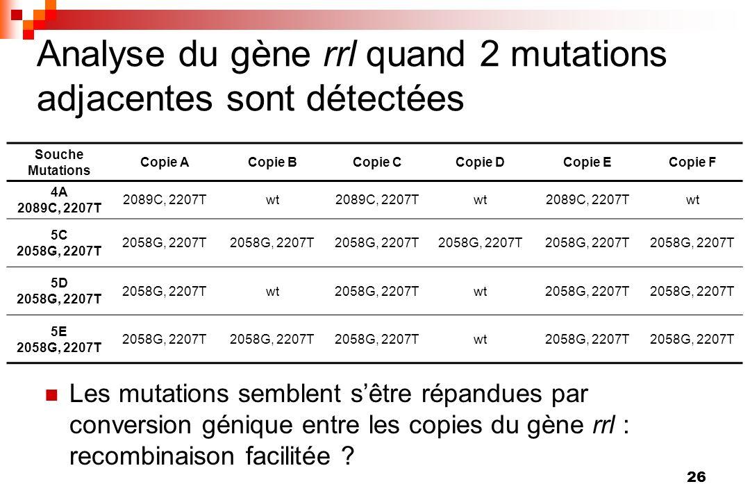 26 Analyse du gène rrl quand 2 mutations adjacentes sont détectées Souche Mutations Copie ACopie BCopie CCopie DCopie ECopie F 4A 2089C, 2207T wt2089C