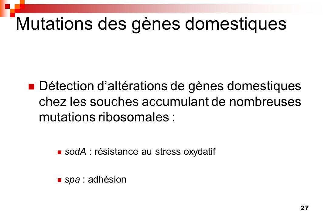 27 Mutations des gènes domestiques Détection daltérations de gènes domestiques chez les souches accumulant de nombreuses mutations ribosomales : sodA