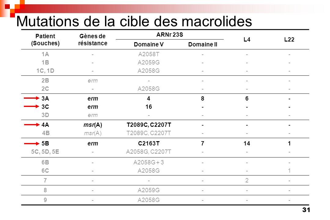 31 Mutations de la cible des macrolides Patient (Souches) Gènes de résistance ARNr 23S L4L22 Domaine VDomaine II 1A 1B 1C, 1D ------ A2058T A2059G A20