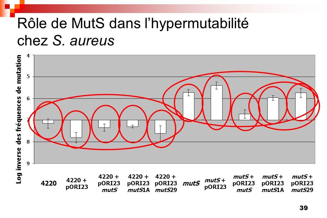 39 Rôle de MutS dans lhypermutabilité chez S. aureus 4 4220 + pORI23 4220 4220 + pORI23 mutS29 mutS mutS + pORI23 mutS + pORI23 mutS mutS + pORI23 mut