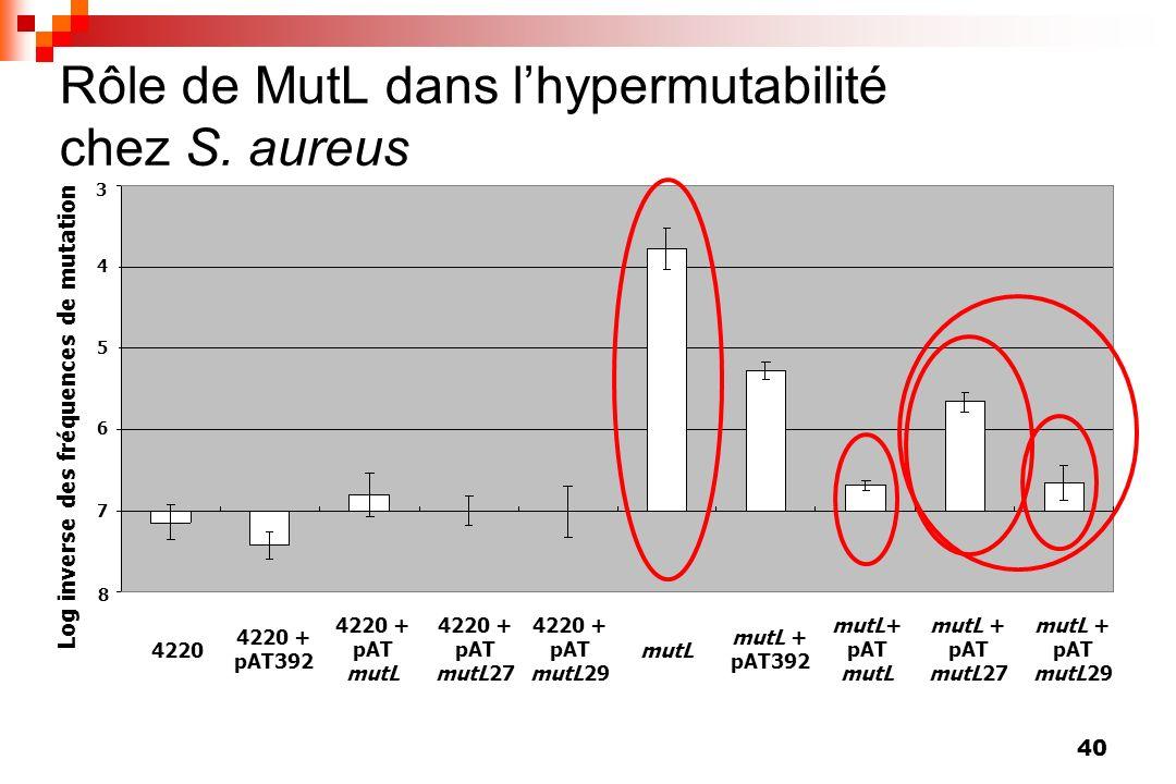 40 3 Log inverse des fréquences de mutation 4 6 5 7 8 4220 + pAT mutL 4220 + pAT392 4220 4220 + pAT mutL27 4220 + pAT mutL29 mutL mutL + pAT392 mutL+