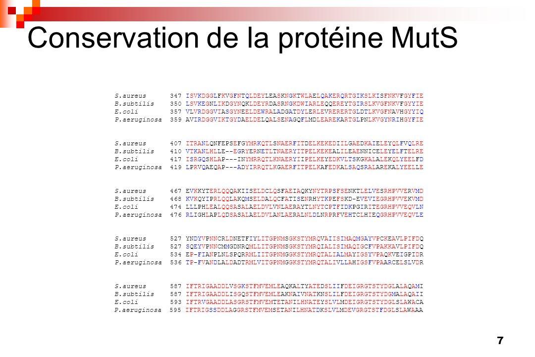 7 Conservation de la protéine MutS S.aureus 347 ISVKDGGLFKVGFNTQLDEYLEASKNGKTWLAELQAKERQRTGIKSLKISFNKVFGYFIE B.subtilis 350 LSVKEGNLIKDGYNQKLDEYRDASRN