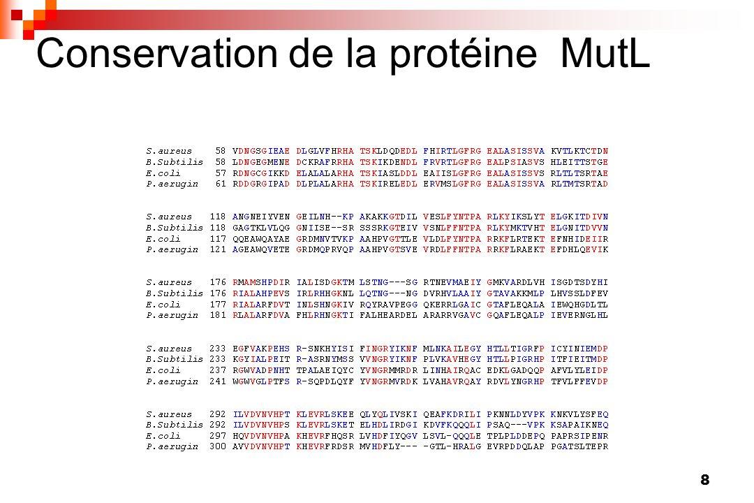 9 SRM et recombinaison Inhibe la recombinaison entre fragments dADN homéologues : barrière à léchange interspécifique (Matic et al., Trends Microbiol., 1996) Important pour la notion de mutateur transitoire : réacquisition facilitée dun SRM fonctionnel par recombinaison (de Visser, Microbiology, 2002) Confirmé par la structure en mosaïque des gènes mutS et mutL (Denamur et al., Cell, 2000)