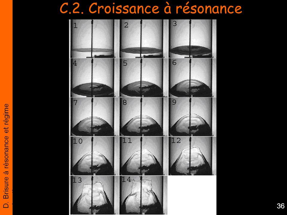 D. Brisure à résonance et régime chaotique 36 C.2. Croissance à résonance