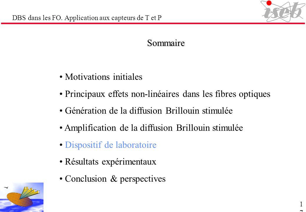 DBS dans les FO. Application aux capteurs de T et P Sommaire Motivations initiales Principaux effets non-linéaires dans les fibres optiques Génération
