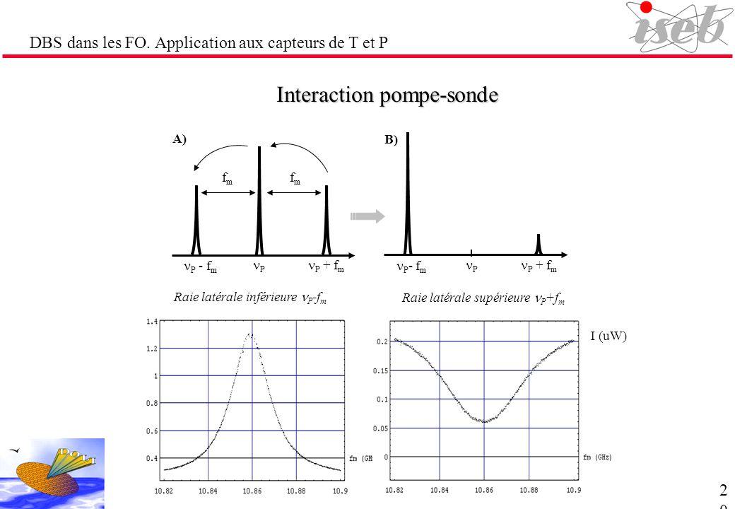 DBS dans les FO. Application aux capteurs de T et P Interaction pompe-sonde P + f m P - f m P fmfm fmfm P + f m P - f m P A) B) Raie latérale supérieu