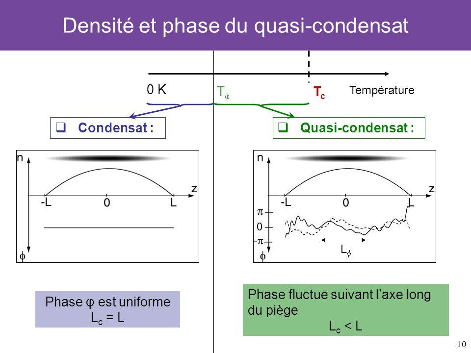10 Densité et phase du quasi-condensat 0 K TcTc Température T Condensat : Phase φ est uniforme L c = L Quasi-condensat : Phase fluctue suivant laxe lo