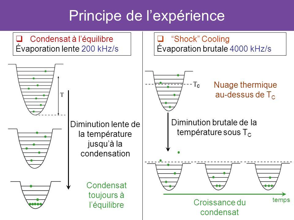 27 Principe de lexpérience Condensat à léquilibre Évaporation lente 200 kHz/s Condensat toujours à léquilibre Diminution lente de la température jusqu