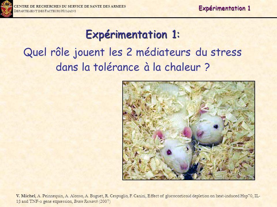 C ENTRE DE R ECHERCHES DU S ERVICE DE S ANTE DES A RMEES D EPARTEMENT DES F ACTEURS H UMAINS Expérimentation 1 V. Michel, A. Peinnequin, A. Alonso, A.