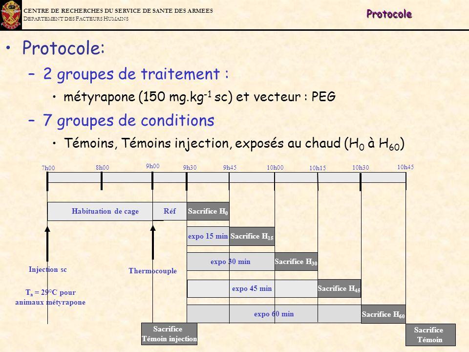 C ENTRE DE R ECHERCHES DU S ERVICE DE S ANTE DES A RMEES D EPARTEMENT DES F ACTEURS H UMAINSProtocole Protocole: –2 groupes de traitement : métyrapone