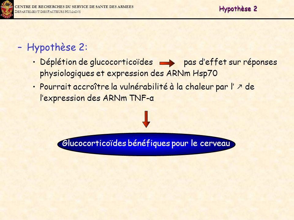 C ENTRE DE R ECHERCHES DU S ERVICE DE S ANTE DES A RMEES D EPARTEMENT DES F ACTEURS H UMAINS Hypothèse 2 –Hypothèse 2: Déplétion de glucocorticoïdes p