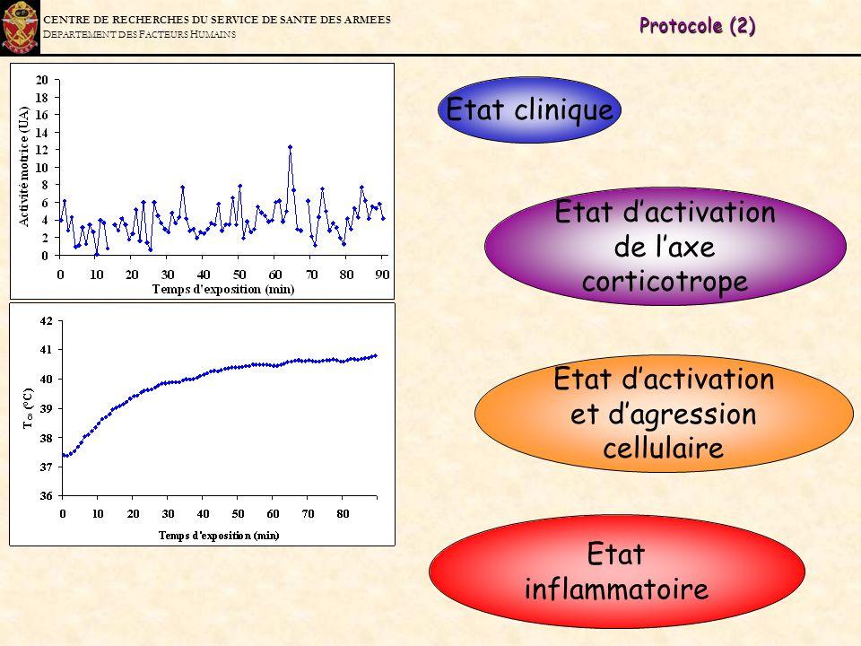 C ENTRE DE R ECHERCHES DU S ERVICE DE S ANTE DES A RMEES D EPARTEMENT DES F ACTEURS H UMAINS Protocole (2) Etat clinique Etat dactivation de laxe cort