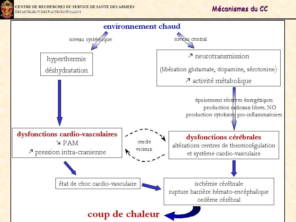 C ENTRE DE R ECHERCHES DU S ERVICE DE S ANTE DES A RMEES D EPARTEMENT DES F ACTEURS H UMAINS Mécanismes du CC, NO