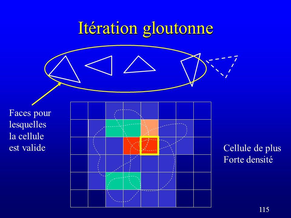 115 Itération gloutonne Cellule de plus Forte densité Faces pour lesquelles la cellule est valide