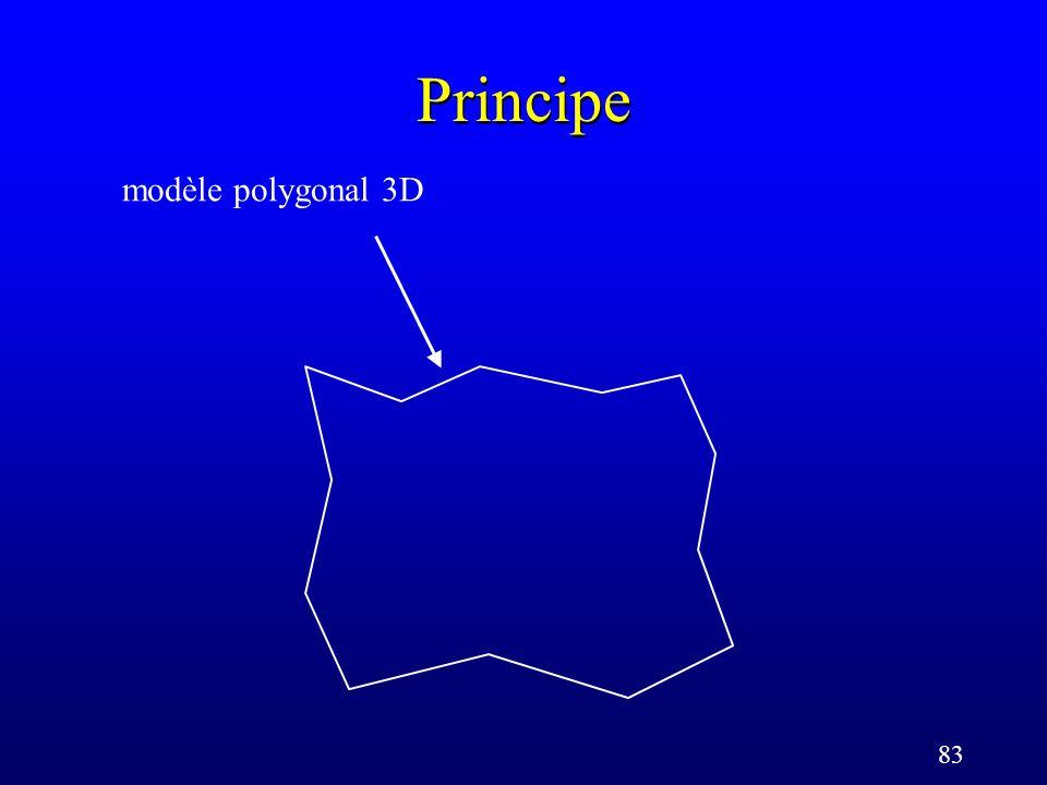 83 Principe modèle polygonal 3D