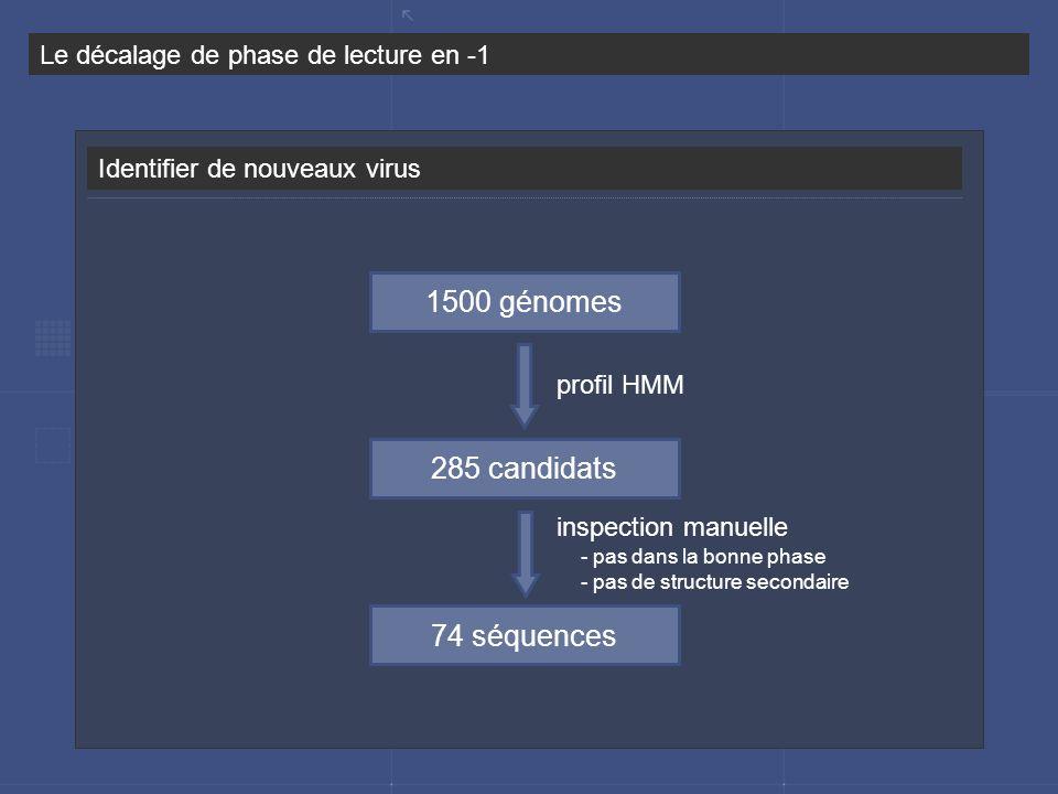Identifier de nouveaux virus Le décalage de phase de lecture en -1 1500 génomes 285 candidats 74 séquences profil HMM inspection manuelle - pas dans l