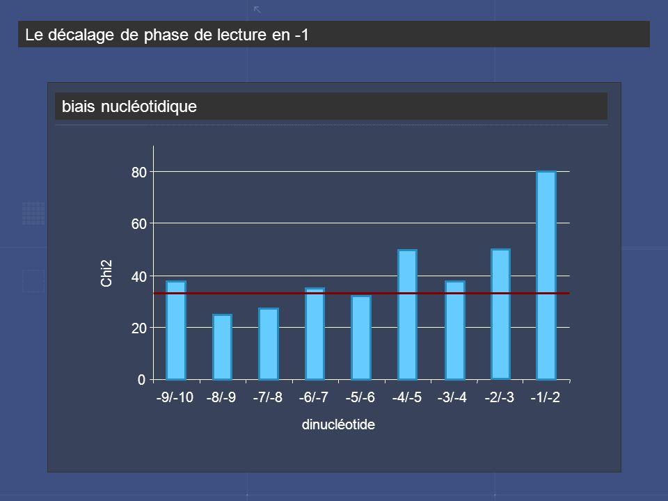 biais nucléotidique Le décalage de phase de lecture en -1 0 20 40 60 80 -9/-10-8/-9-7/-8-6/-7-5/-6-4/-5-3/-4-2/-3-1/-2 dinucléotide Chi2