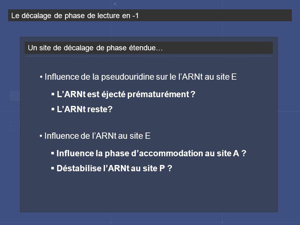 Un site de décalage de phase étendue… Le décalage de phase de lecture en -1 LARNt est éjecté prématurément ? LARNt reste? Influence de la pseudouridin