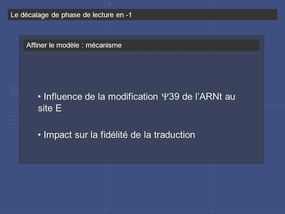 Le décalage de phase de lecture en -1 Affiner le modèle : mécanisme Influence de la modification 39 de lARNt au site E Impact sur la fidélité de la tr