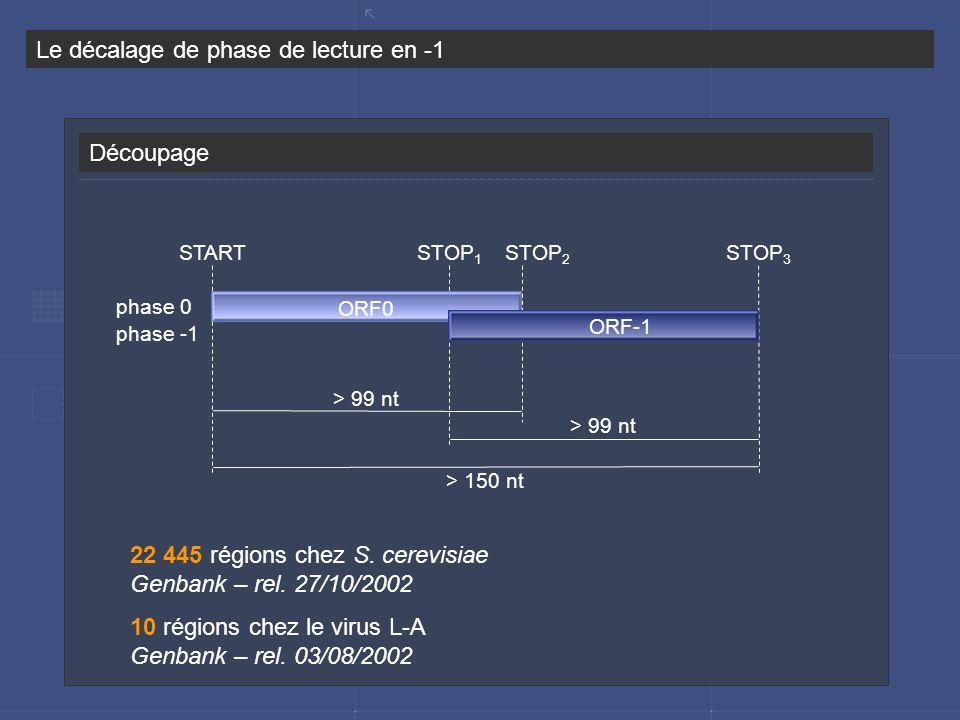 Découpage Le décalage de phase de lecture en -1 START > 99 nt STOP 1 STOP 2 STOP 3 phase 0 phase -1 > 99 nt > 150 nt ORF0 ORF-1 22 445 régions chez S.