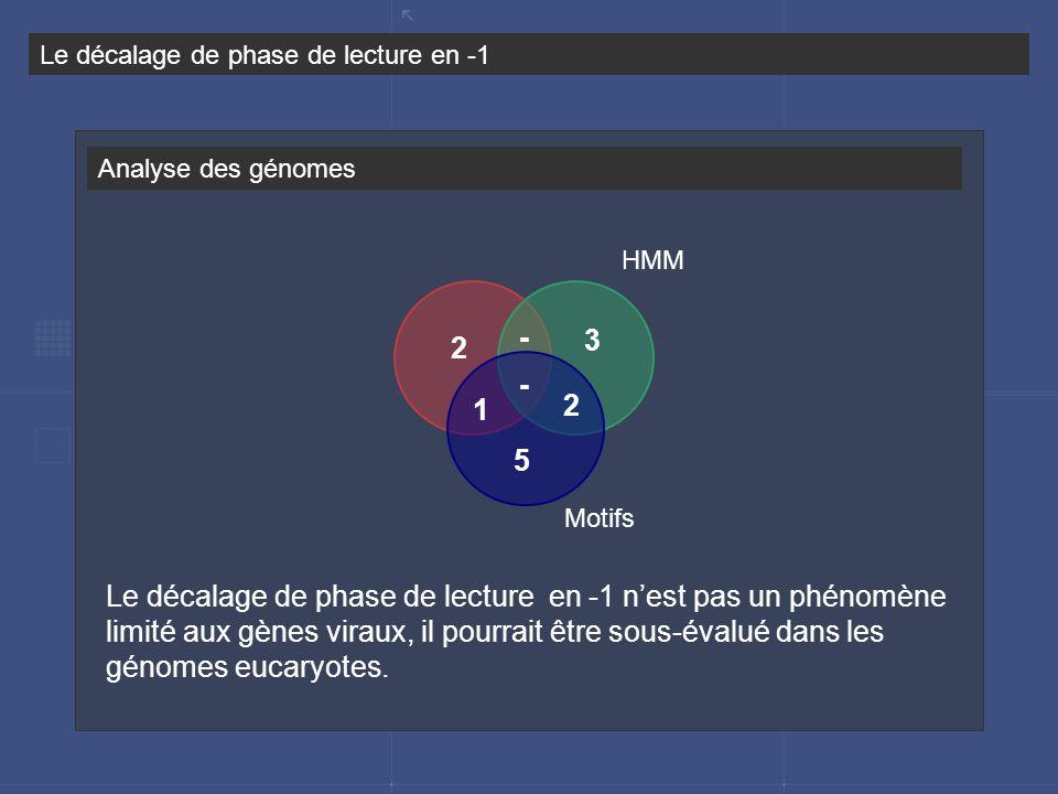 Analyse des génomes Le décalage de phase de lecture en -1 Le décalage de phase de lecture en -1 nest pas un phénomène limité aux gènes viraux, il pour